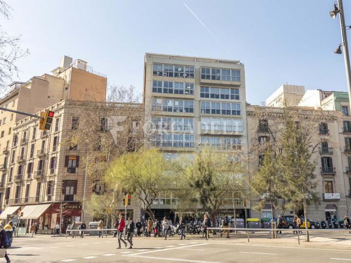 Oficina lluminosa de lloguer a la pl. Universitat, al centre de Barcelona. 8