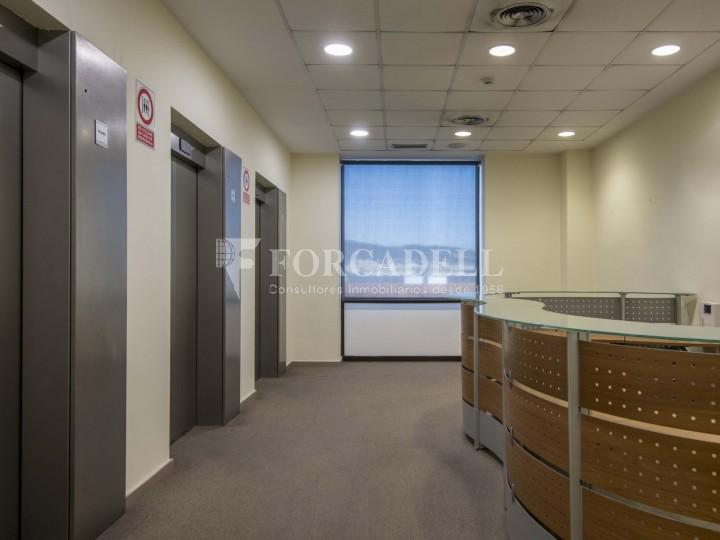 Oficina en lloguer molt lluminosa i implantada, al costar del Recinte de Fira II Barcelona. #2