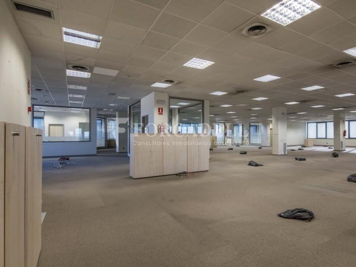 Oficina en lloguer molt lluminosa i implantada, al costar del Recinte de Fira II Barcelona. #8