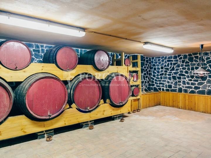 Casa amb terreny annex amb arbres fruiters, a la comarca de La Selva. Girona.  55