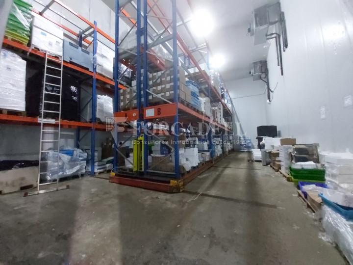 Nave industrial en venta con camaras de frio de 2.117 m² - Mercabarna, Barcelona  5