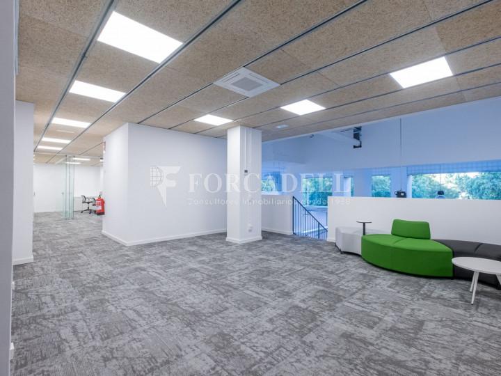 Oficina de nova construcció claud en mà a Cornellà de Llobregat. 8