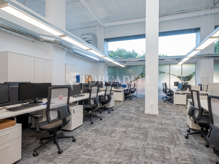 Oficina de nova construcció claud en mà a Cornellà de Llobregat. 6
