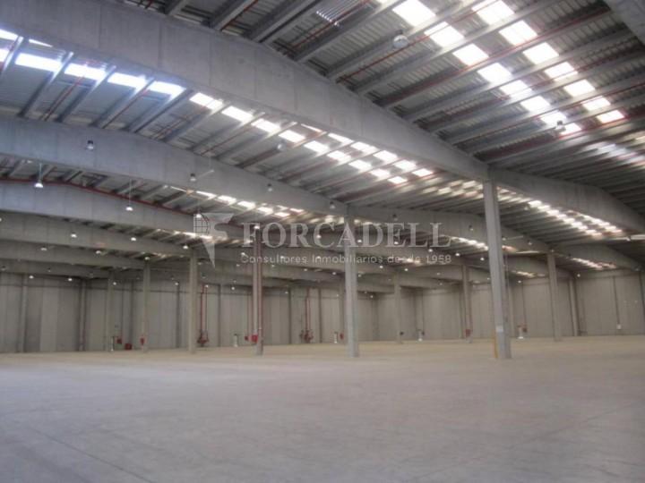 Nave logística - industrial de 9.738  m² en venta o  alquiler - El Pla Santa Maria. Tarragona #3