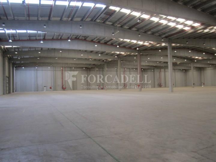 Nave logística - industrial de 9.738  m² en venta o  alquiler - El Pla Santa Maria. Tarragona #4