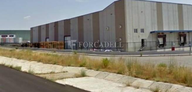 Nave logística - industrial de 9.738  m² en venta o  alquiler - El Pla Santa Maria. Tarragona #6