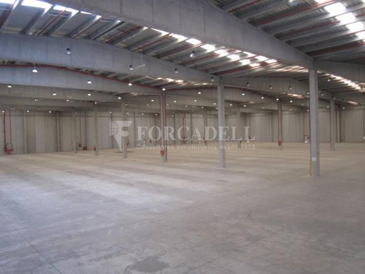 Nave logística - industrial de 9.738  m² en venta o  alquiler - El Pla Santa Maria. Tarragona #8