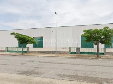 Nave industrial en venta o alquiler de 1.545 m² - Sant Pere de Ribes, Barcelona.