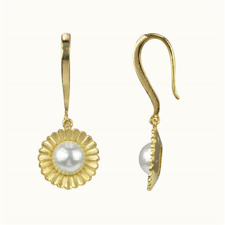 50598 CZ Delicate Earring with gold plating