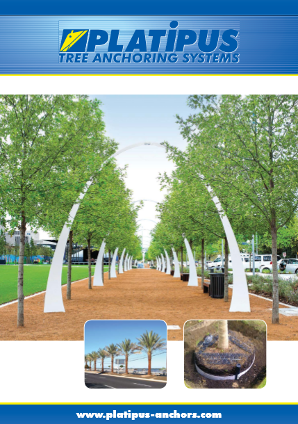 Platiplus- Tree anchoring systems Brochure
