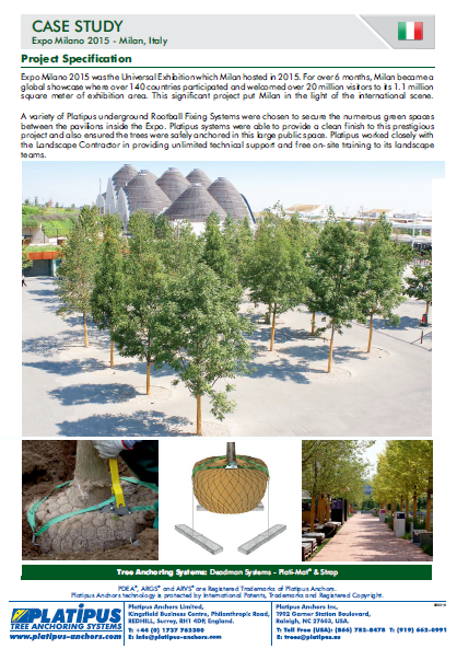 Case Study - Milan Expo Brochure