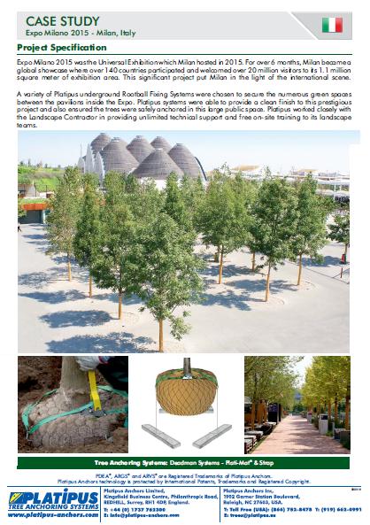 Case Study - Milan Expo Brochure