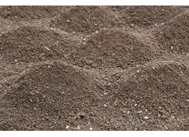 Soils and Rootzones