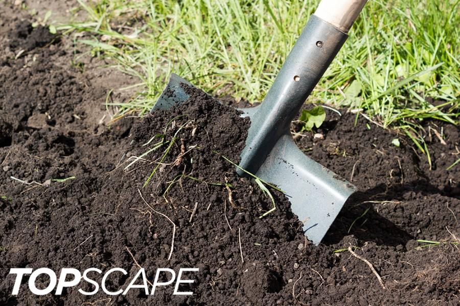 Topscape Soils