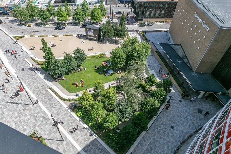 Waterscapes' irrigation expertise features at TV Centre