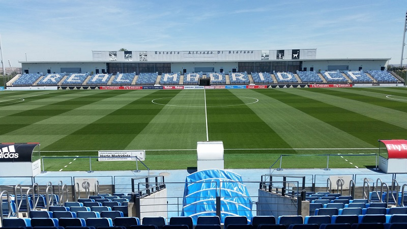 Hybrid pitch technology focus for County Turf