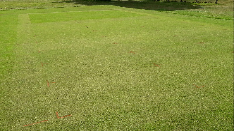 Low intensity suffers as cut height reduces
