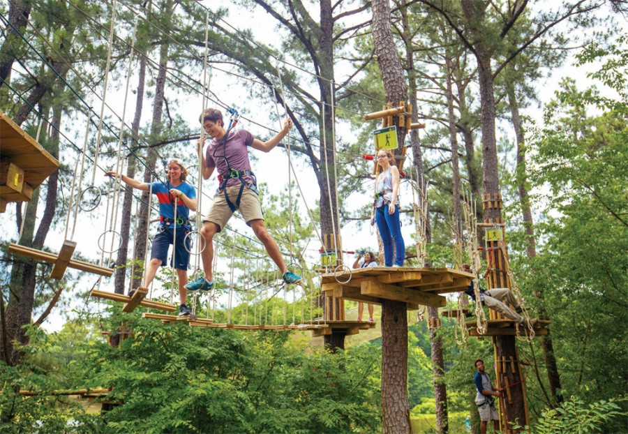 Go Ape! wins first-ever RoSPA Leisure Trophy for health and safety practices