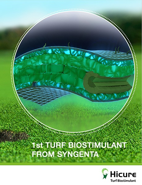 Hicure biostimulant to build plant energy and protect turf