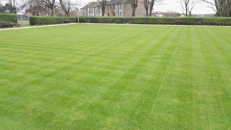 Green Fingers lawn care specialist warms to Rigby Taylor's Super Root seed's quick cold weather establishment