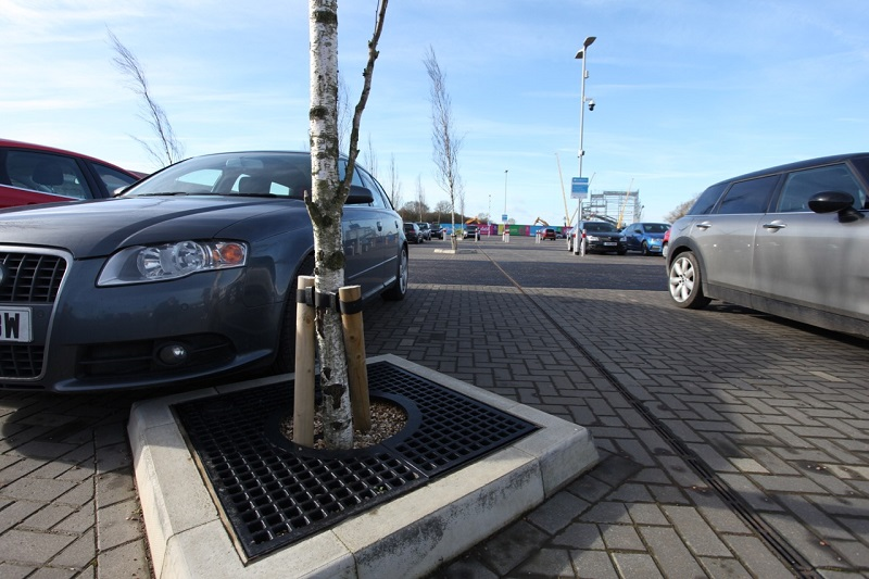 ACO stormwater tanks provide an innovative tree pit solution