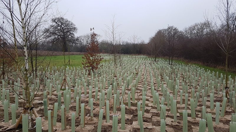​Green-tech supply landscaping materials for £9m Bushey Jewish Cemetery Project