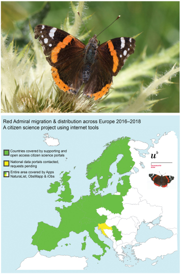 Have you seen a Red Admiral? Please record it!