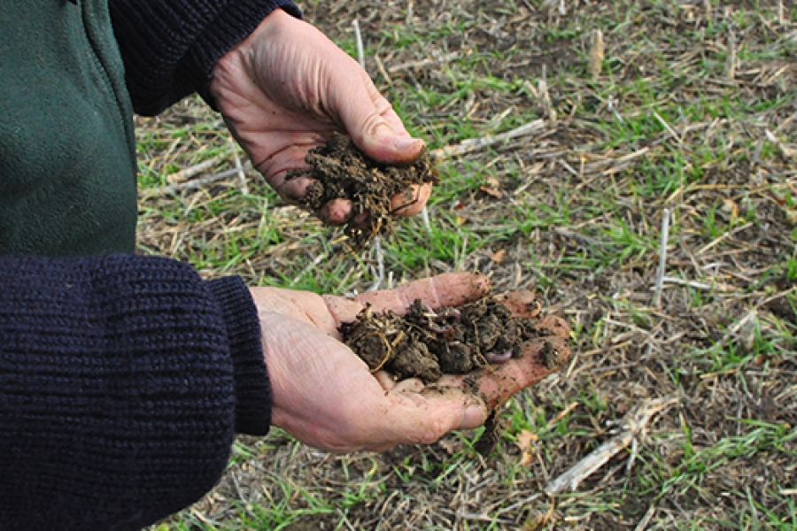 Time to reassess our approach to soil