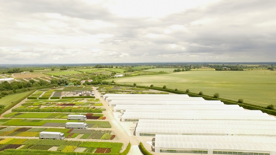 Johnsons of Whixley celebrates 220 million plant supply during a century in business