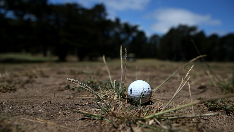 Greenkeepers advised to act fast to save drought-torn grass