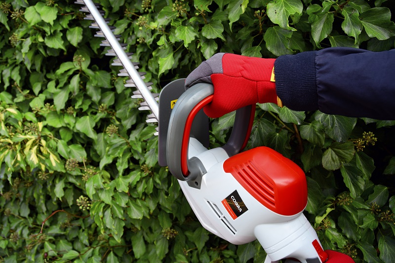Have healthy hedges with Cobra this autumn