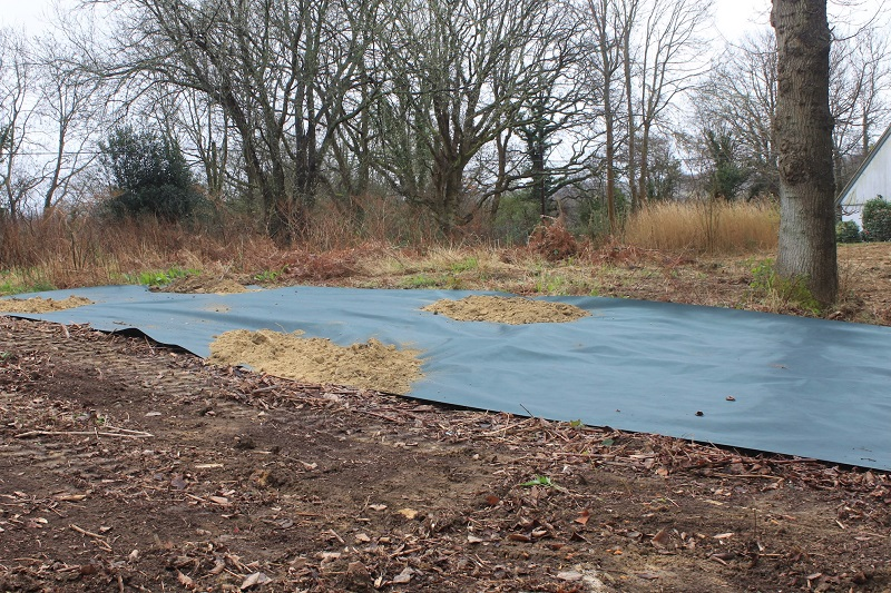 New membrane to contain Japanese knotweed