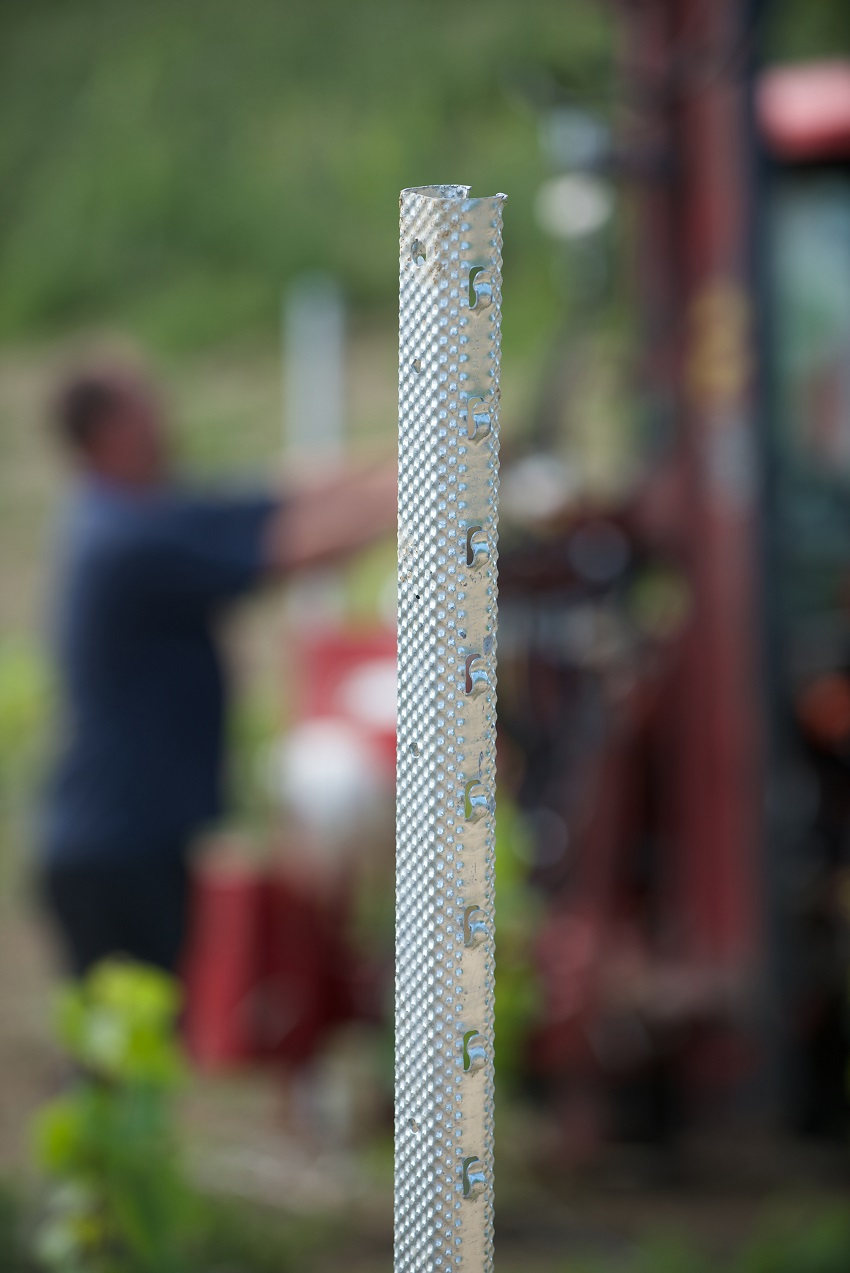 Vineyard specialist supplying trellis supports from Hadley Group