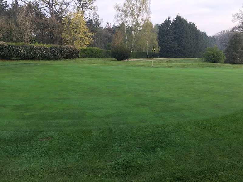 Bayer plays supportive role in providing outstanding playing conditions