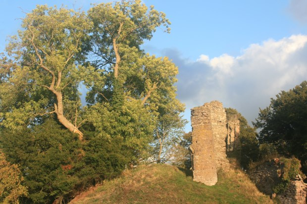 Protection for ancient trees at historic sites across England