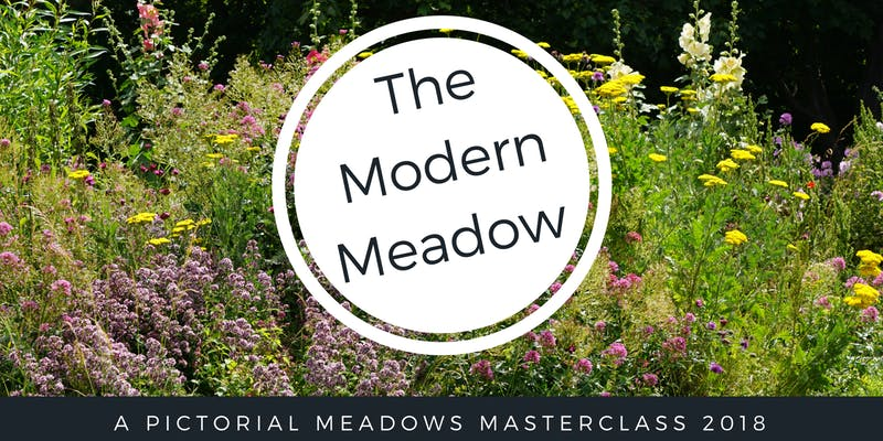 Book today for meadow masterclass event this July