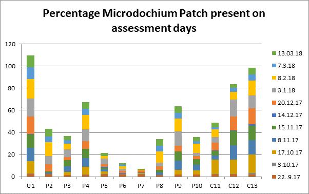 Preventative fungicide treatments excel in STRI research trials