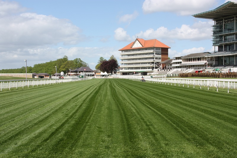 Limagrain the front runner at York Racecourse