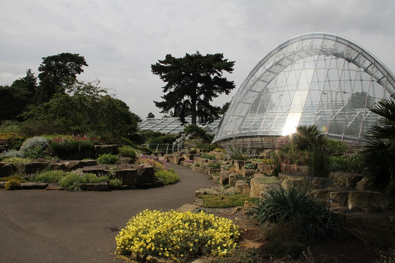 GRAHAM Construction appointed to £50m Kew scheme