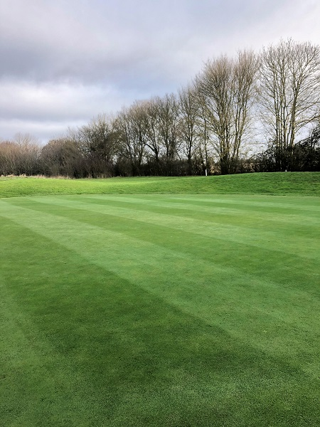 Xpedite rescues Manor of Groves GC from seemingly unsolvable saturated greens