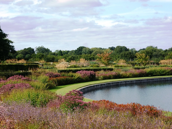 RHS launches campaign to save 500 trees at Wisley
