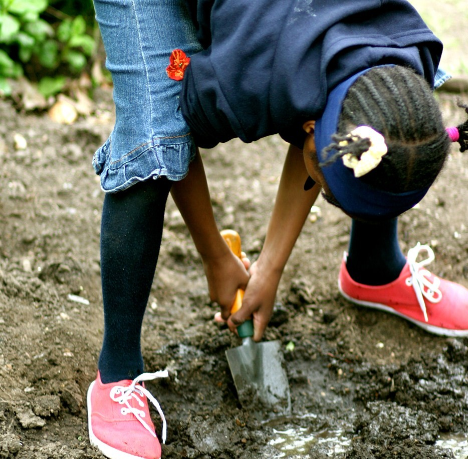 Inner city families create urban jungle for kids lacking green space