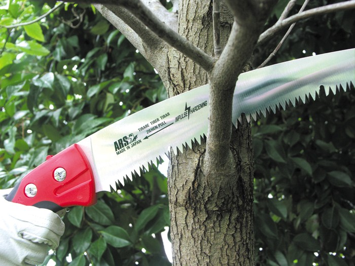 Fine pruning with ARS and Sorbus International
