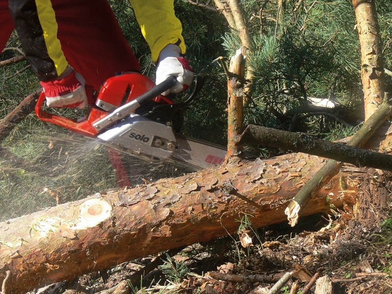 Solo's new chainsaws are smooth operators