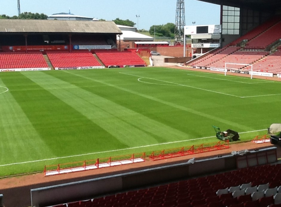 Cold soil and low light no problem for Johnsons Premier Pitch