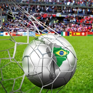 Johnsons Sports Seeds brings Brazil to Harrogate