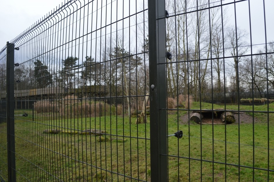 Fencing specialist secures Chester Zoo