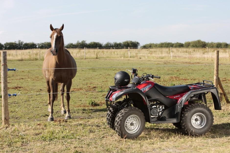 Suzuki GB supports Houghton International Horse Trials
