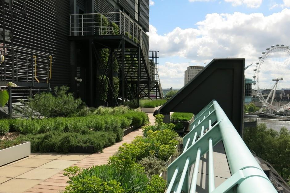 Scotscape completes comprehensive landscape programme for PwC
