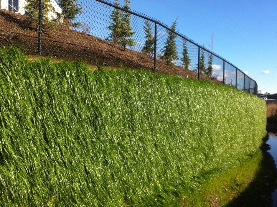 New Flex MSE vegetated wall system at Resilience 14